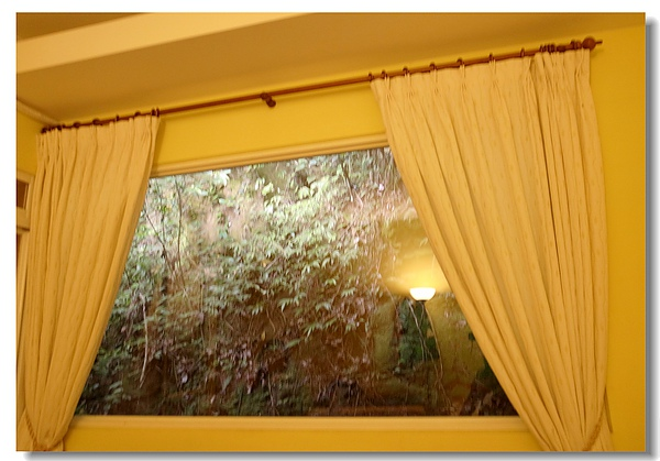 8.靠牆的窗外爬籐綠景.jpg