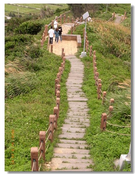 8.心開眼廣的綠色步道.jpg