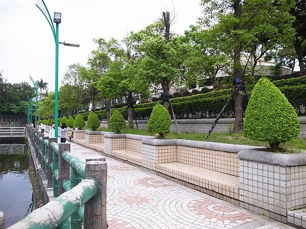 2.飯糰造型樹.JPG