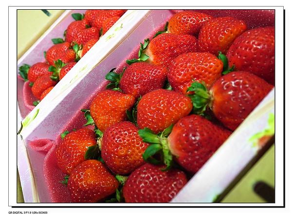 4.一份兩盒草莓.JPG