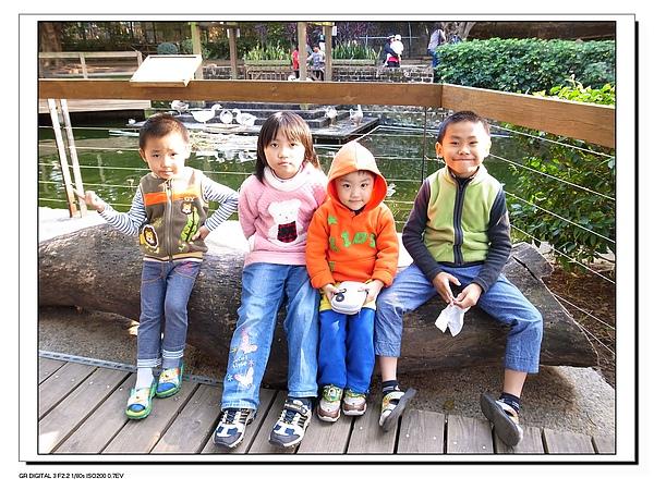 7.兩兄弟與表姐弟遊新竹動物園.jpg