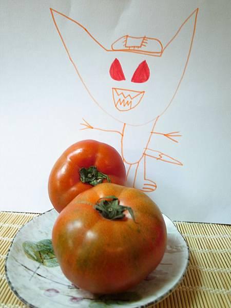11.紅通通的黑柿.JPG