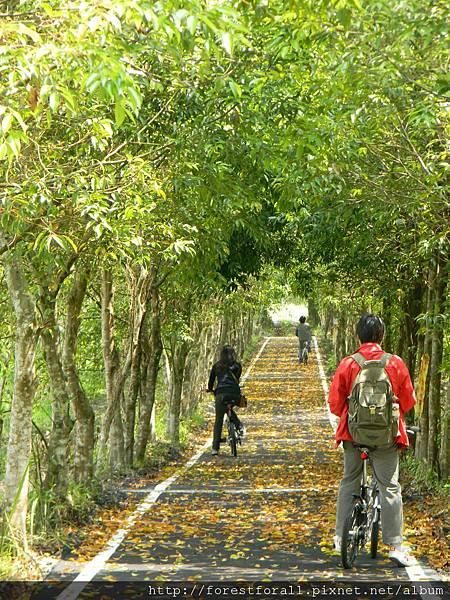 自行車道DSCN1432.JPG