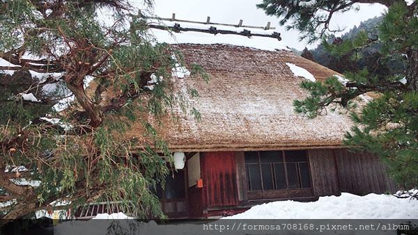 再見冬天-京都版合掌村與明治維新燈光展3.jpg