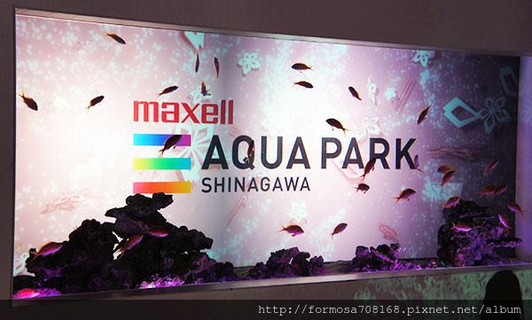 海豚舞動櫻花中-飯店裡的水族館3.jpg