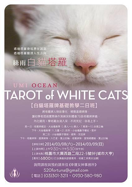 White_Cats_20140308
