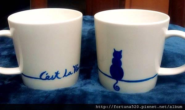 珍妮老師 貓咪杯