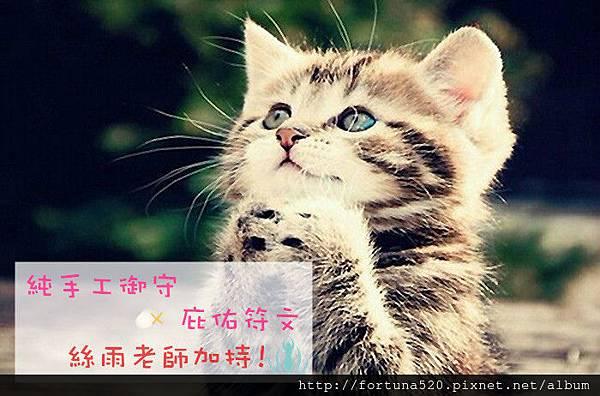保佑貓咪_副本