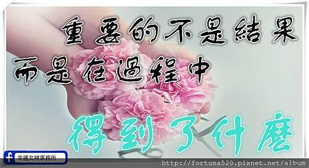 cloves-1367675_960_720_副本.jpg