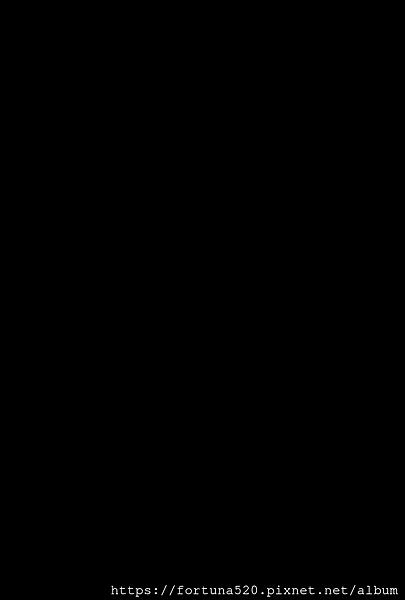 元辰宮守護神-西王母圖