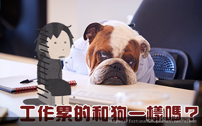 觀元辰宮_換工作.jpg.png