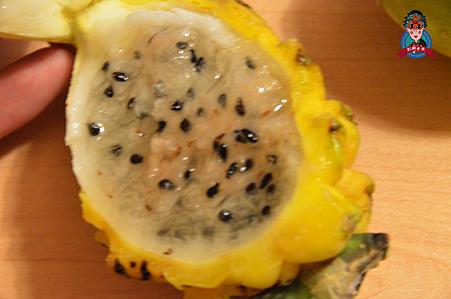 奇怪水果12.png