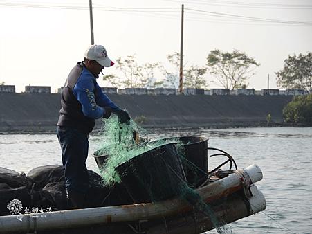 台江漁樂園40.png