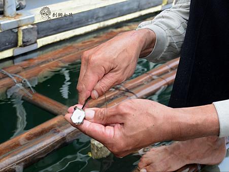 台江漁樂園7.png