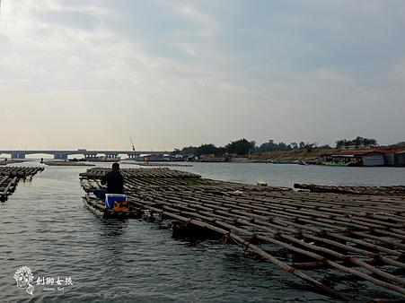 台江漁樂園3.png