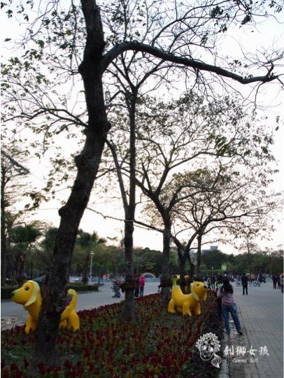 水萍塭公園台南市百花季33.jpg