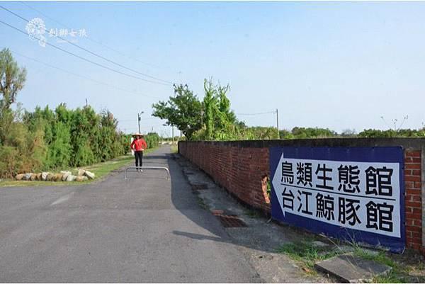 安順鹽場四草生態保護區 15.jpg