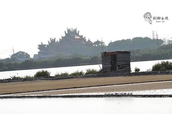 安順鹽場四草生態保護區 60.jpg