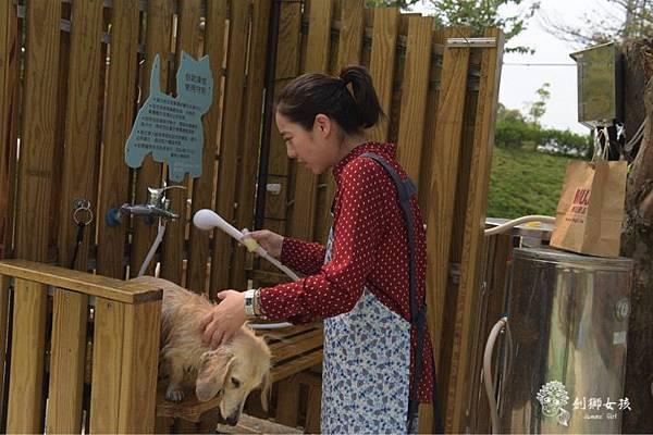森呼吸寵物農場Jorona park62.jpg
