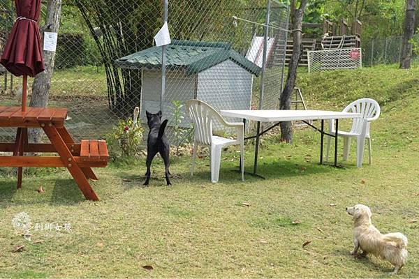 森呼吸寵物農場Jorona park47.jpg
