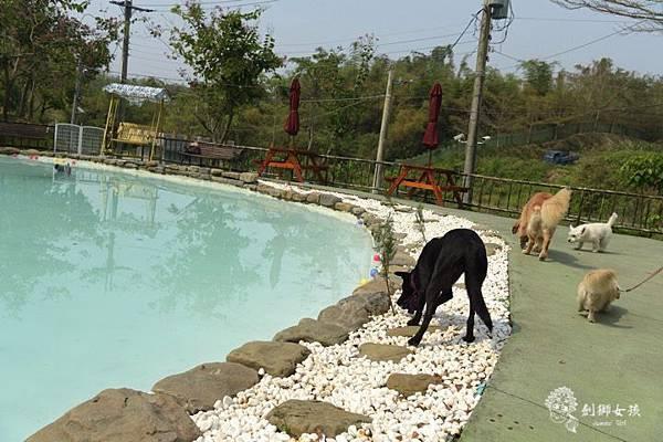 森呼吸寵物農場Jorona park6.jpg