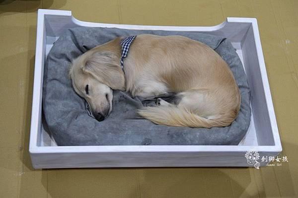 幸福優木寵物床 57.jpg