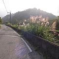 石碇半日遊_09