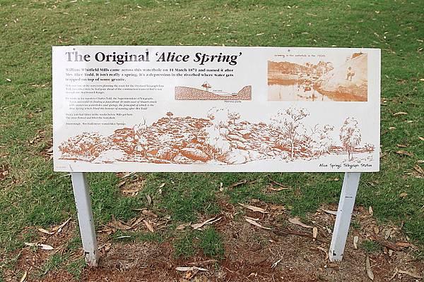 Alice's Spring11.JPG