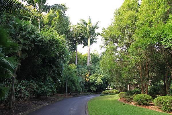 Botanic Gardens_23.JPG