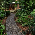Botanic Gardens_34.JPG
