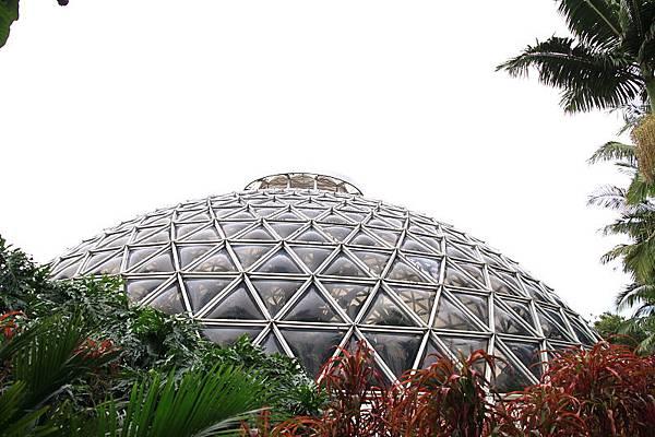 Botanic Gardens_39.JPG