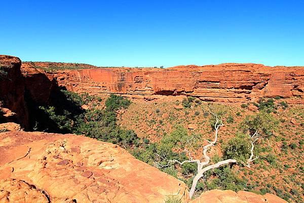 King Canyon31.JPG