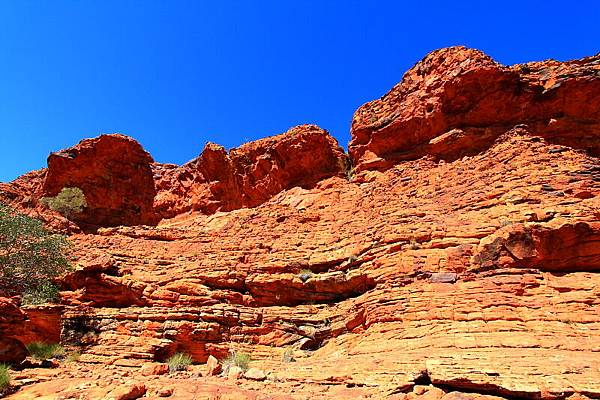 King Canyon17.JPG