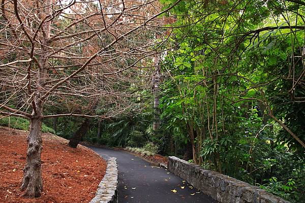 Botanic Gardens_29.JPG