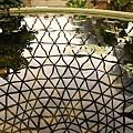 Botanic Gardens_41.JPG