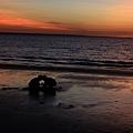 mildil sunset market2_17.JPG