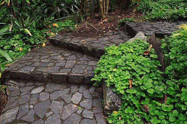 Botanic Gardens_33.JPG