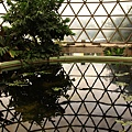 Botanic Gardens_43.JPG