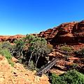 King Canyon39.JPG