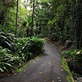 Botanic Gardens_28.JPG