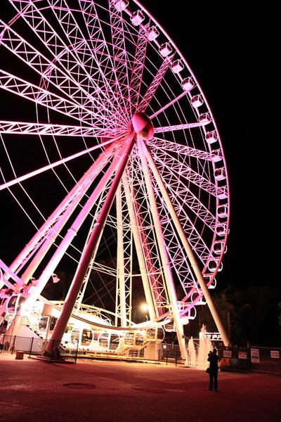 Brisbane 河岸夜景_24.JPG
