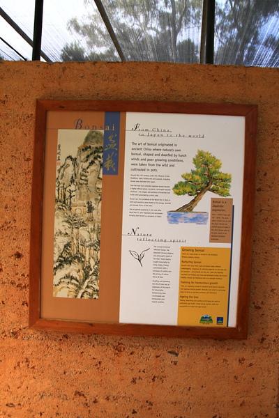 Botanic Gardens_19.JPG