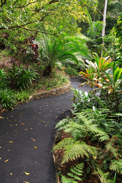 Botanic Gardens_31.JPG