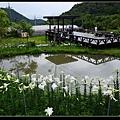 環湖.jpg