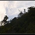 山型1.jpg