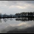 水中央2.jpg