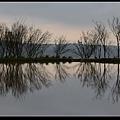 水中央15.jpg