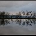 水中央17.jpg
