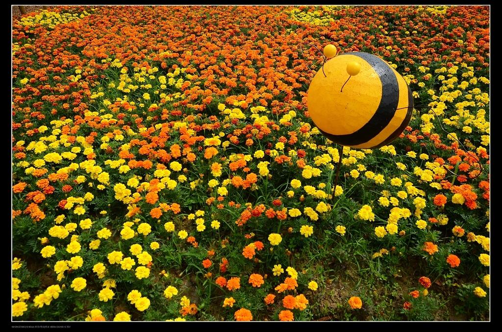 蜜蜂館.jpg