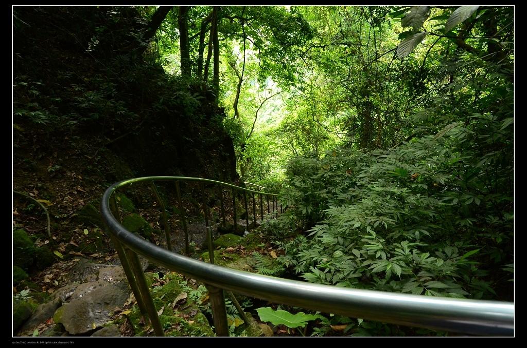 登山步道1.jpg